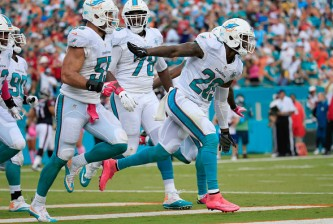 MIAMI GARDENS, FL - OCTOBER 25:  Reshad Jones #20 of the Miami Dolphins celebrates a touchdown with his teammates  in the second quarter during a game against the Houston Texans at Sun Life Stadium on October 25, 2015 in Miami Gardens, Florida.  (Photo by Chris Trotman/Getty Images)