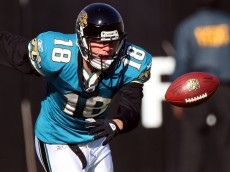 JACKSONVILLE, FL - NOVEMBER 23:  Matt Jones #18 of the Jacksonville Jaguars fumbles after making a reception against the Minnesota Vikings during the game at Jacksonville Municipal stadium on November 23, 2008 in Jacksonville, Florida.  (Photo by Sam Greenwood/Getty Images)