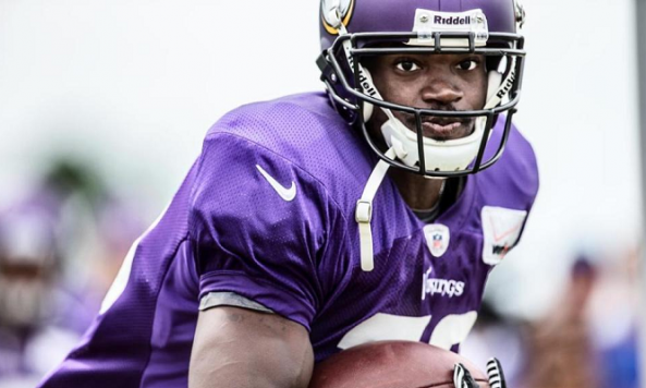 adrian peterson training camp 2013