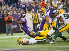 peterson haiku packers 2013
