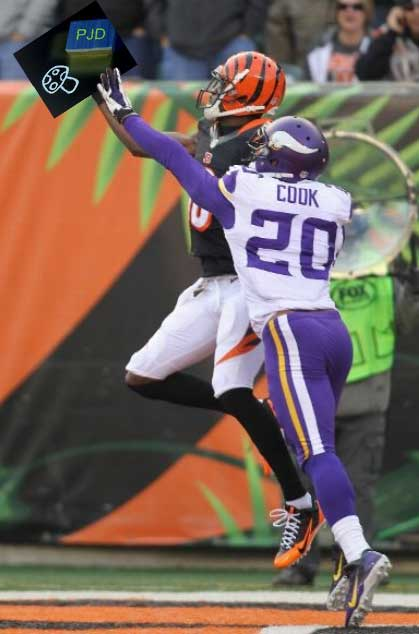 Chris Cook bengals 2013