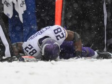 peterson injured in snow ravens