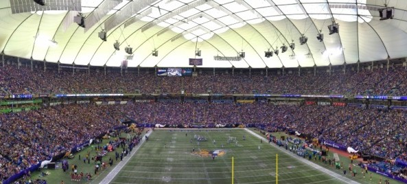 vikings fan megapixel 010