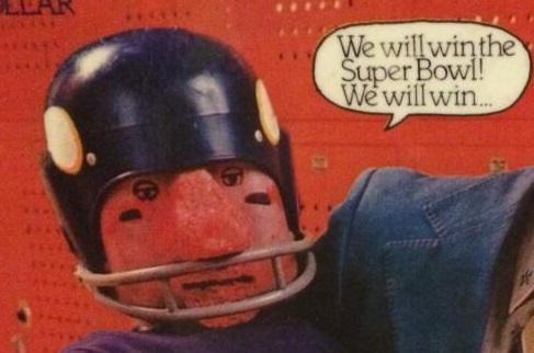 vikings dummy super bowl