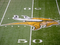 MINNEAPOLIS, MN - DECEMBER 18: A general view of the Minnesota Vikings' logo on the 50 yard line during the game between the Minnesota Vikings and the New Orleans Saints on December 18, 2011 at Mall of America Field at the Hubert H. Humphrey Metrodome in Minneapolis, Minnesota. (Photo by Hannah Foslien/Getty Images)