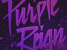 635886691653780528-2023916978_purple reign
