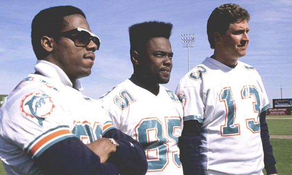 dolphins-preview