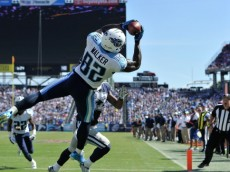 NASHVILLE, TN - SEPTEMBER 14: Delanie Walker #82 of the Tennessee Titans catches the ball in the end zone moments before landing out of bounds for an incomplete pass against the Dallas Cowboys  in the second half of a game at LP Field on September 14, 2014 in Nashville, Tennessee.  (Photo by Frederick Breedon/Getty Images)