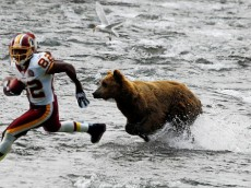 Antwaan Randle El, one of the fastest players in the NFL, claims he return a kickoff against a bear. a bear expert said that bears can run 35 mph, while the fastest human can run 27 mph. However, Randle El claims that he could out-juke the bear.  dailyyeah.com 2008
