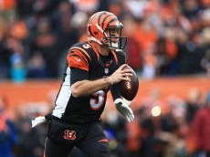 CINCINNATI, OH - JANUARY 3: Quarterback AJ McCarron #5 of the Cincinnati Bengals scrambles out of the pocket during the first quarter against the Baltimore Ravens at Paul Brown Stadium on January 3, 2016 in Cincinnati, Ohio. (Photo by Andrew Weber/Getty Images)