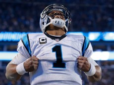 during the NFC Championship Game at Bank of America Stadium on January 24, 2016 in Charlotte, North Carolina.