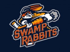 swamp-rabbits_80771