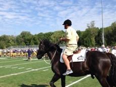 brian kelly horse