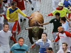 4tqR1gSReXWGKYHljWTA_Raging bull