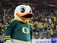 SANTA CLARA, CA - DECEMBER 5:  The Oregon Ducks mascot encourages fans against the Arizona Wildcats on December 5, 2014 during the Pac-12 Championship at Levi's Stadium in Santa Clara, California.  Oregon won 51-13.  (Photo by Brian Bahr/Getty Images)