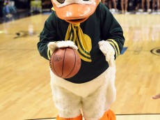 LAS VEGAS, NV - MARCH 12:  Oregon Ducks mascot The Duck plays basketball before a quarterfinal game of the Pac-12 Basketball Tournament against the Colorado Buffaloes at the MGM Grand Garden Arena on March 12, 2015 in Las Vegas, Nevada. Oregon won 93-85.  (Photo by Ethan Miller/Getty Images)
