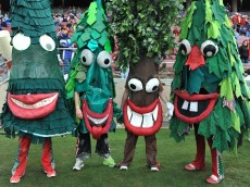 Stanford-Tree-Mascot-Monday