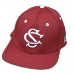 south-carolina-baseball-logo11-150x150