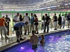 Marlins_Park_Pool