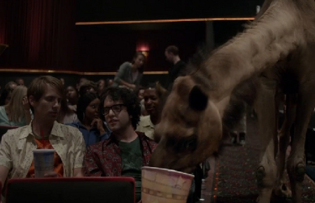 Hump Day Camel Geico Gif Geico 39 s Camel Loves Movie Day