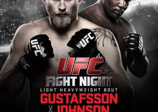 Gustafsson vs Johnson Fight Video Highlights