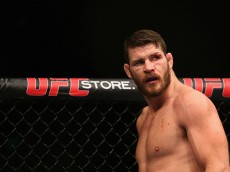ufc 186 betting guide