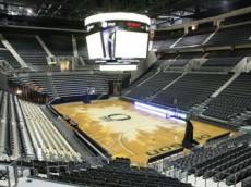 Ducks Basketball Court