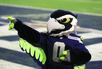 Seahawks Mascot