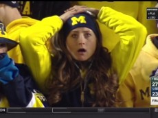 Michigan Fan
