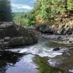 east fork lewis river
