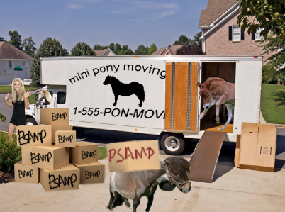 mini-pony-moving