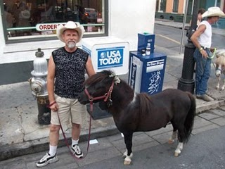 6-21-09_miniature_horse