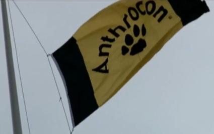 anthroconflag