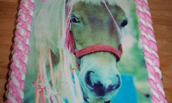 normal_birthday_-_miniature_horse_2
