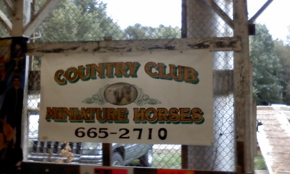 countryclubminihorsessigndoug