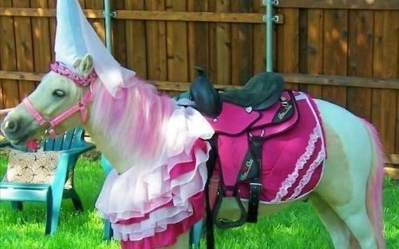 princess_pony