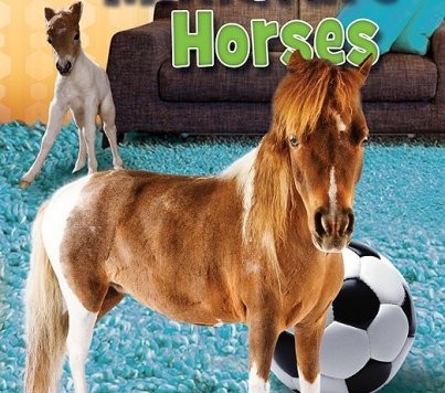 miniaturehorsessoccerballbook