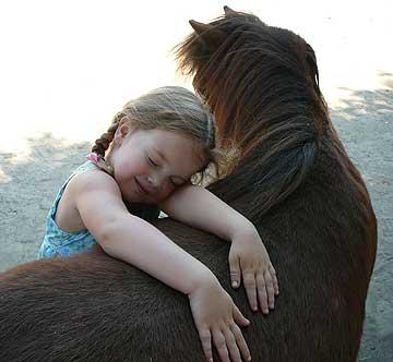 miniature_horse_farms_california-9016