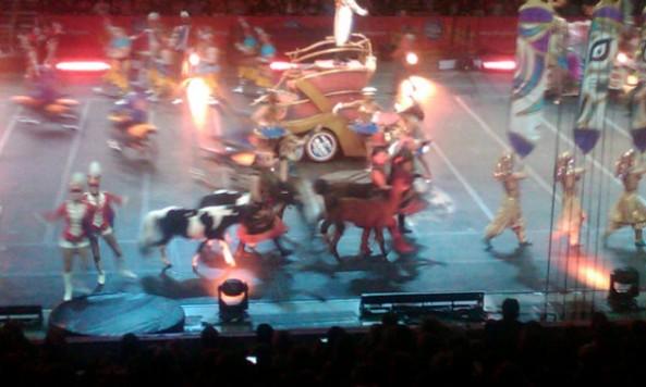circusminiponiesletangueray