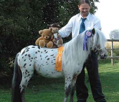 teddy_and_kanga_on_horse