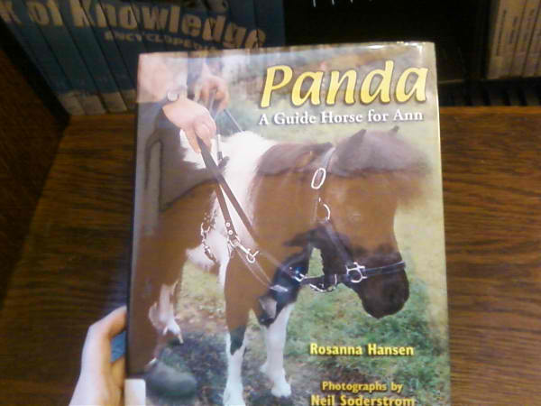 pandaminihorselibrarybookdana1