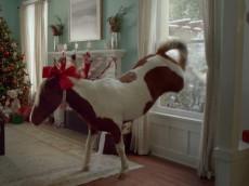ebayminiponycommercialchristmas2012sean