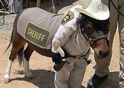 sheriffminipony