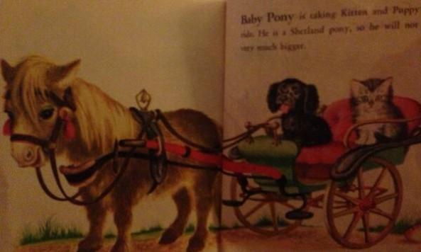 babyponychildrensbookbenstate