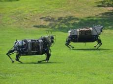 robotminiponies
