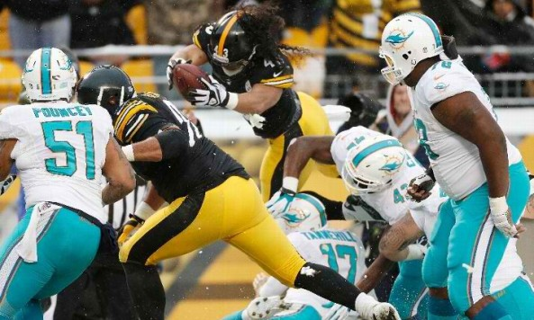 week14dolphinssteelers12_8_13