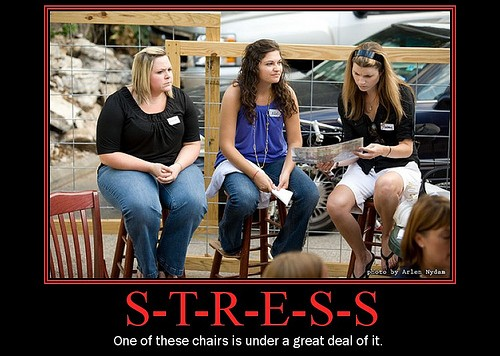 Stream_Pies_Stress