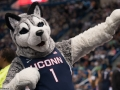 UConn's mascot during the 2015 American Athletic Conference men's championship finals between the SMU Mustangs and the UConn Huskies at the XL Center in Hartford, CT.