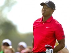Tiger Woods Back