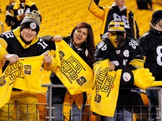 during their AFC Wild Card game at Heinz Field on January 3, 2015 in Pittsburgh, Pennsylvania.